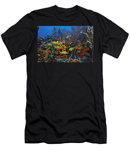 Lynns Reef On A Perfect Day Men's T-Shirt (Athletic Fit)
