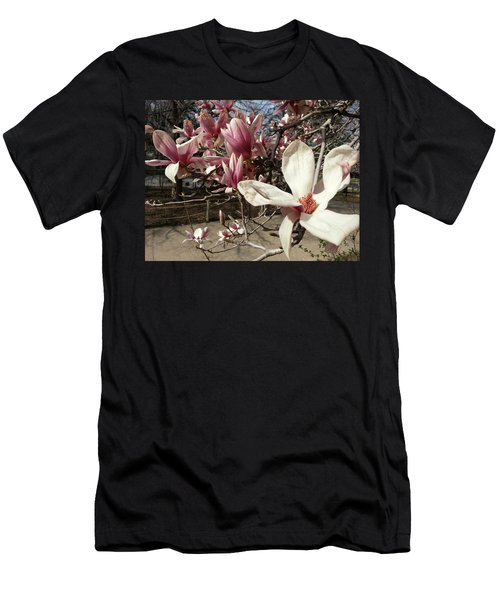Men's T-Shirt (Slim Fit) featuring the photograph Magnolia Branches by Caryl J Bohn