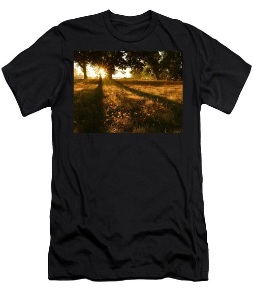 Majestic Oaks Sunrise Men's T-Shirt (Athletic Fit)
