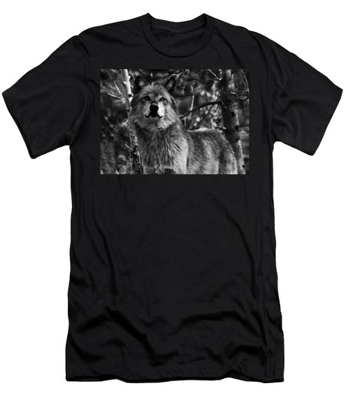 Men's T-Shirt (Athletic Fit) featuring the photograph Majesty by Aidan Moran
