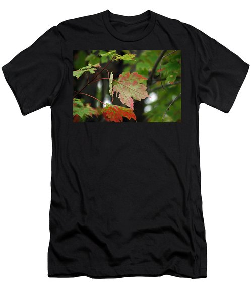 Maple Turning Men's T-Shirt (Athletic Fit)