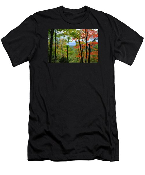 Maples Against Lake Superior - Tettegouche State Park Men's T-Shirt (Athletic Fit)