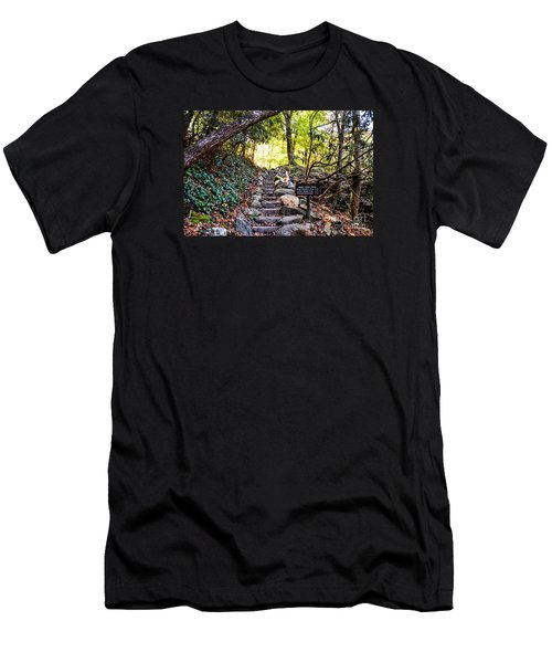 Meigs Creek Trailhead Men's T-Shirt (Athletic Fit)