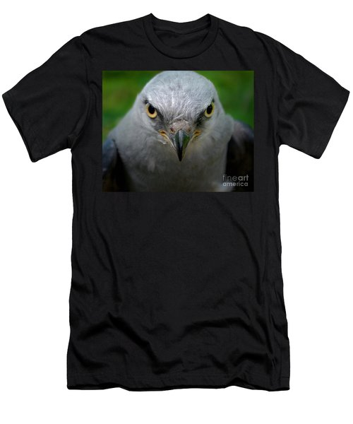 Mississippi Kite Stare Men's T-Shirt (Athletic Fit)