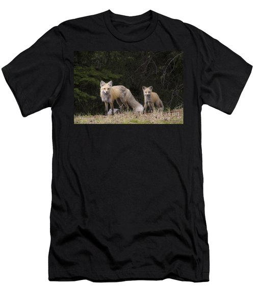 Momma Fox With Her Kit Men's T-Shirt (Slim Fit) by Sonya Lang