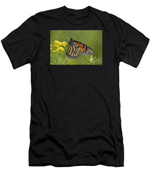 Monarch 2014 Men's T-Shirt (Athletic Fit)