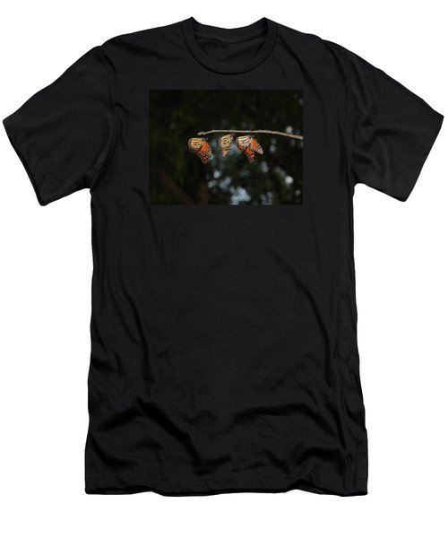 Monarch Trio Men's T-Shirt (Slim Fit) by Shelly Gunderson