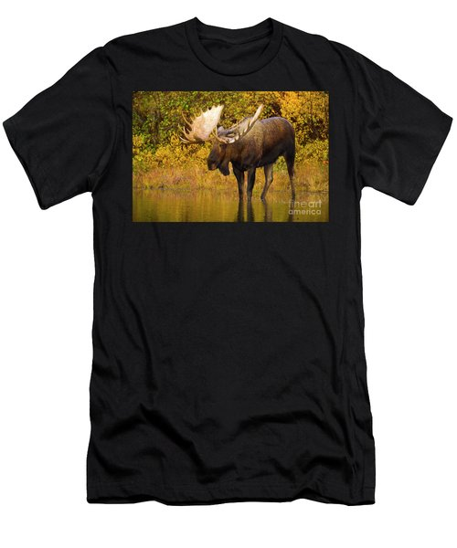 Moose In Glacial Kettle Pond  Men's T-Shirt (Athletic Fit)