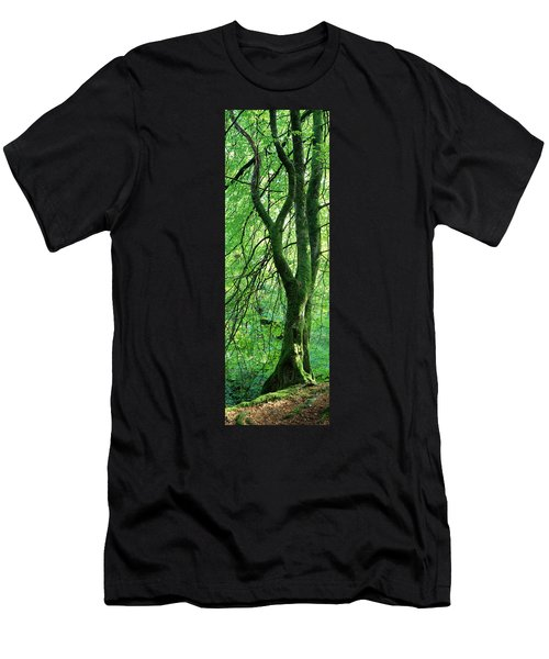 Moss Growing On A Beech Tree Men's T-Shirt (Athletic Fit)