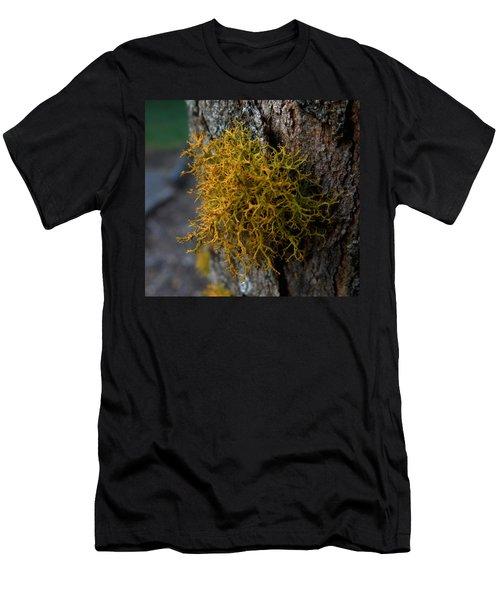 Moss On Tree Men's T-Shirt (Slim Fit) by Pamela Walton