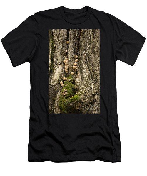 Moss-shrooms On A Tree Men's T-Shirt (Slim Fit) by Carol Lynn Coronios