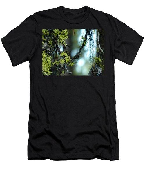Mossy Playground Men's T-Shirt (Slim Fit) by Meghan at FireBonnet Art