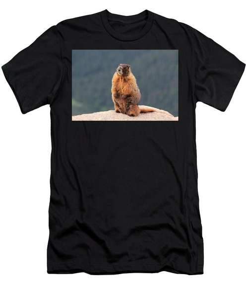 Mother Marmot Men's T-Shirt (Athletic Fit)
