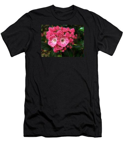 Mountain Laurel ' Olympic Fire ' Men's T-Shirt (Slim Fit)