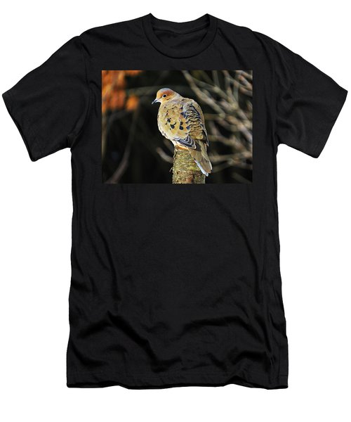 Mourning Dove On Post Men's T-Shirt (Athletic Fit)