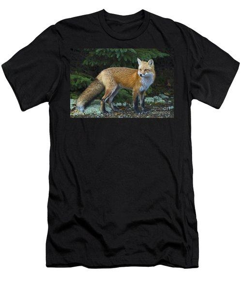 Mr. Fairy Tale.. Men's T-Shirt (Athletic Fit)