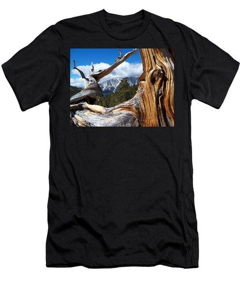 Mt. Charleston Thru A Tree Men's T-Shirt (Slim Fit) by Alan Socolik