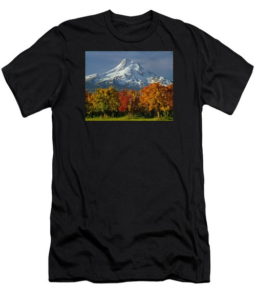 1m5117-mt. Hood In Autumn Men's T-Shirt (Athletic Fit)