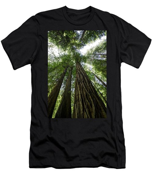 Muir Woods I Men's T-Shirt (Athletic Fit)