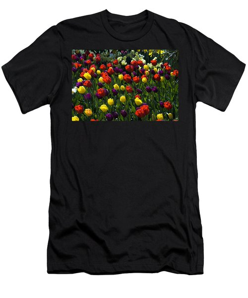 Multicolored Tulips At Tulip Festival. Men's T-Shirt (Athletic Fit)