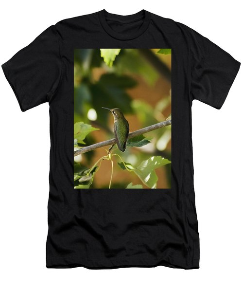My Green Colored Hummingbird 4 Men's T-Shirt (Athletic Fit)