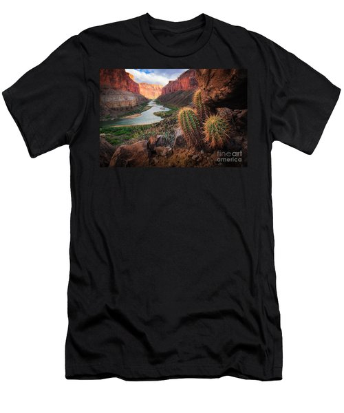 Nankoweap Cactus Men's T-Shirt (Athletic Fit)