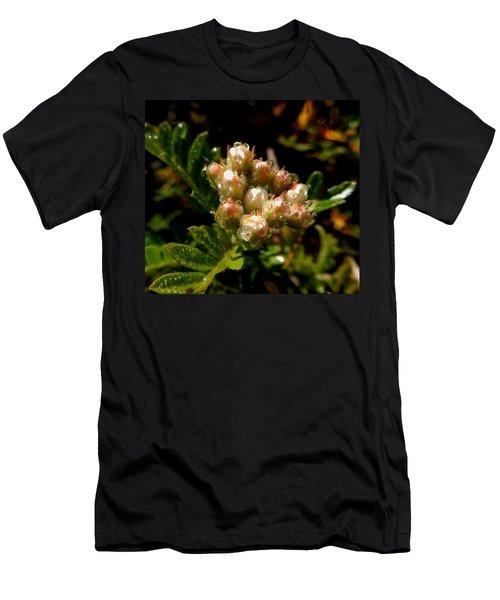 Nature's Drink Men's T-Shirt (Slim Fit) by Pamela Walton