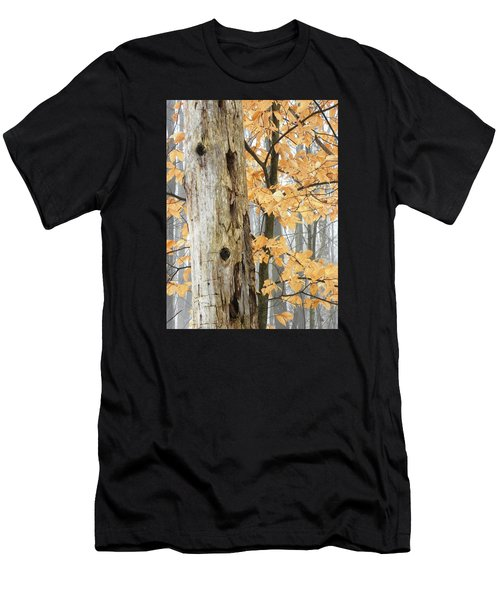 Natures Harmony Men's T-Shirt (Athletic Fit)