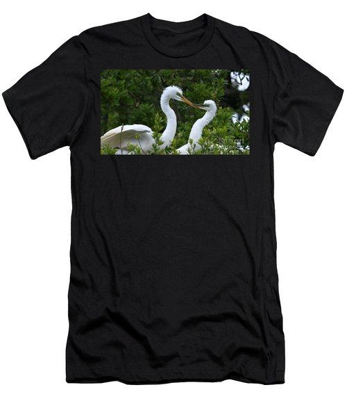 Nest Building Men's T-Shirt (Athletic Fit)