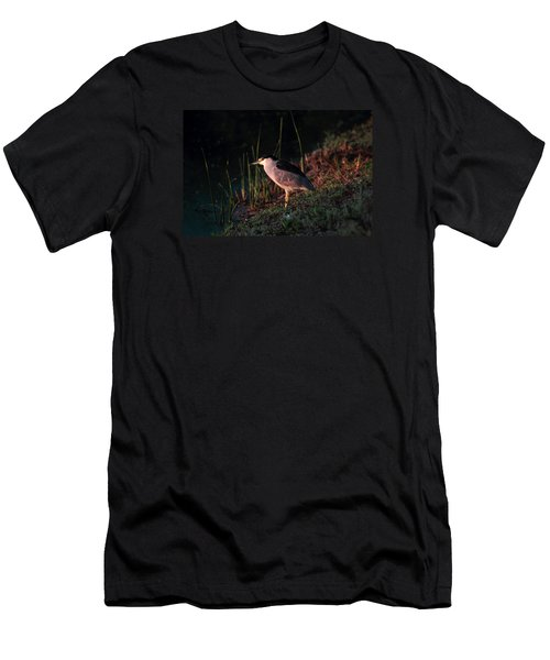 Night Heron  Men's T-Shirt (Slim Fit) by Duncan Selby