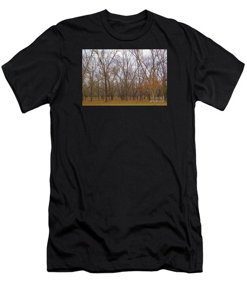 North Florida Orchard In Fall Men's T-Shirt (Athletic Fit)
