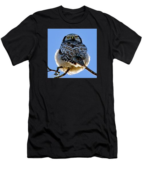 Northern Hawk Owl Looks Around Men's T-Shirt (Athletic Fit)