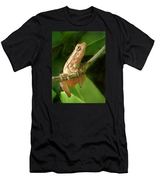 Northern Spring Peeper Men's T-Shirt (Slim Fit) by William Tanneberger
