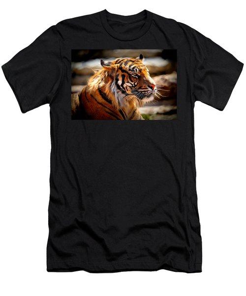 Not A Tigger Men's T-Shirt (Slim Fit) by Lynn Sprowl