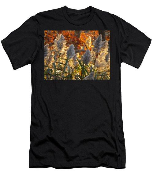 November Lights Men's T-Shirt (Athletic Fit)