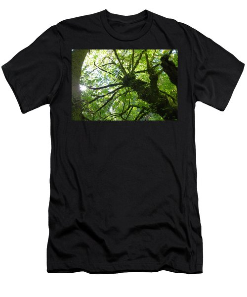 Old Growth Tree In Forest Men's T-Shirt (Athletic Fit)