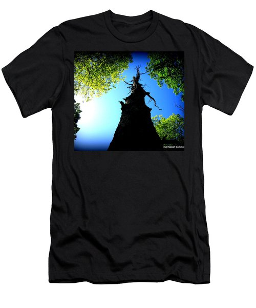 Old Trees Men's T-Shirt (Athletic Fit)