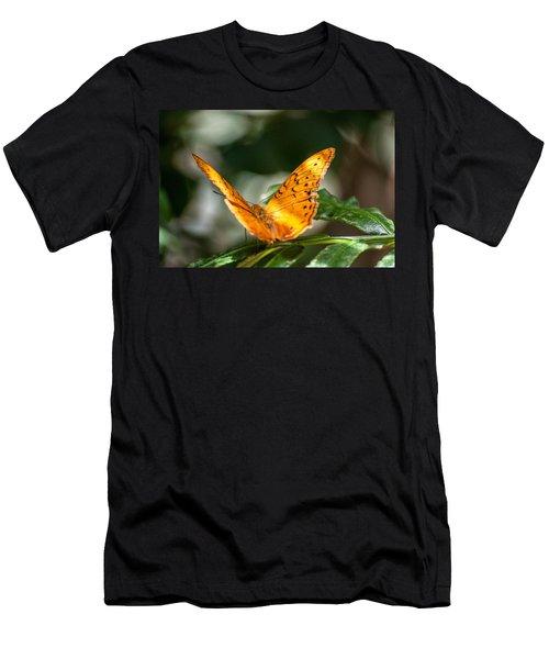 Orange Butterfly Men's T-Shirt (Slim Fit) by Ray Warren