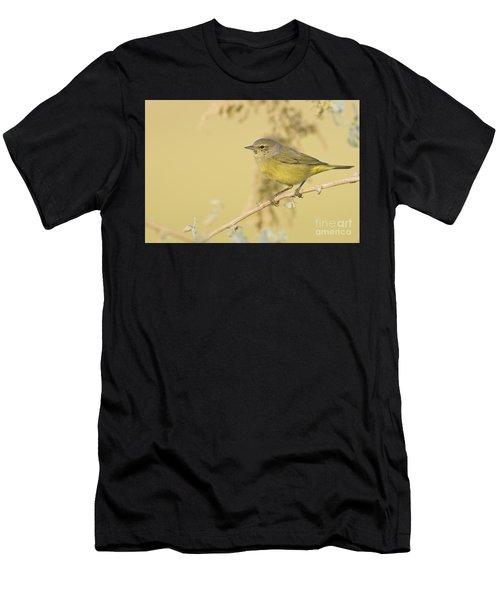 Orange Crowned Warbler Men's T-Shirt (Athletic Fit)
