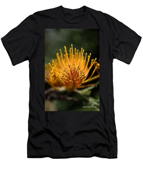Orange Grevillea Men's T-Shirt (Athletic Fit)