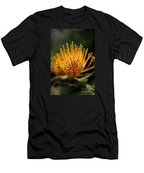 Orange Grevillea Men's T-Shirt (Athletic Fit)