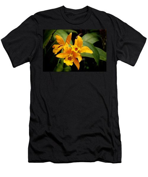 Orange Spotted Lip Cattleya Orchid Men's T-Shirt (Athletic Fit)