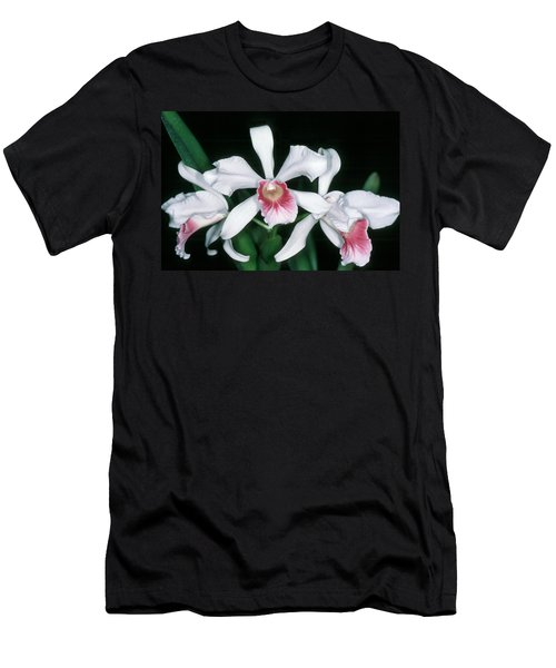 Orchid 10 Men's T-Shirt (Slim Fit) by Andy Shomock