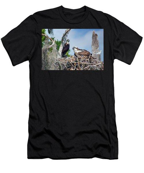 Osprey Family Men's T-Shirt (Athletic Fit)