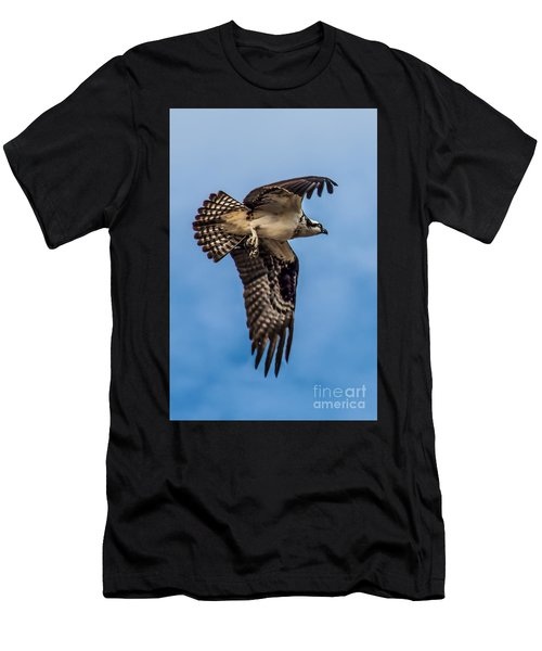 Osprey Flying Away Men's T-Shirt (Athletic Fit)