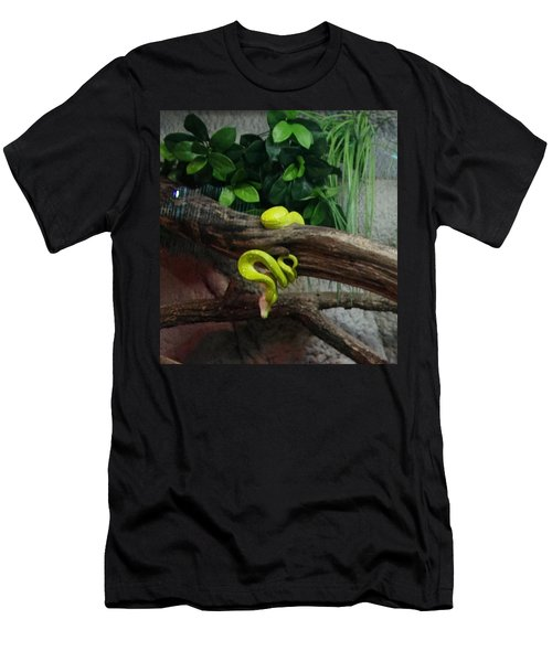 Out Of Africa Tree Snake Men's T-Shirt (Athletic Fit)