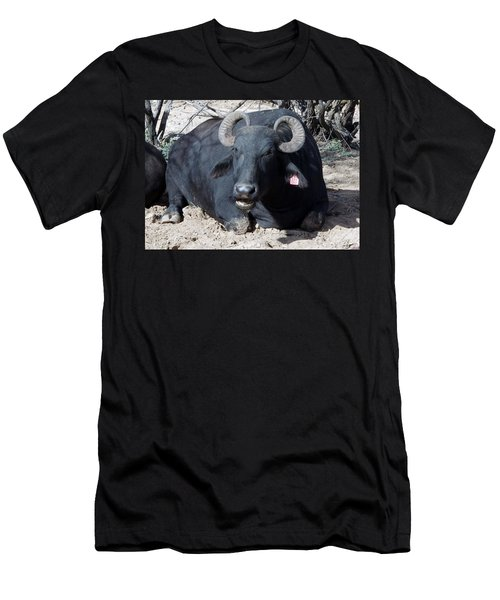 Out Of Africa  Water Buffalo Men's T-Shirt (Athletic Fit)