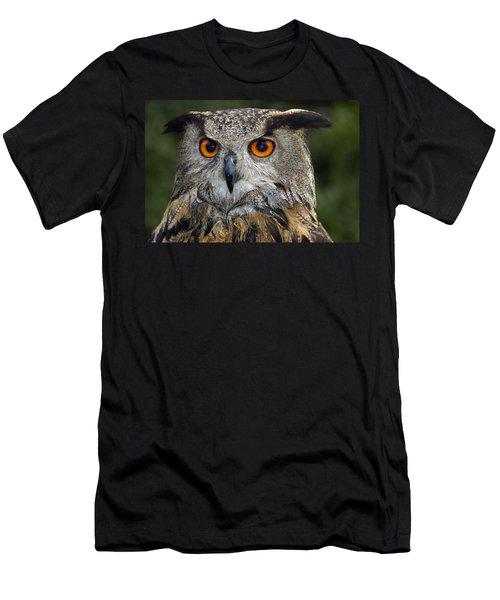 Owl Bubo Bubo Portrait Men's T-Shirt (Athletic Fit)