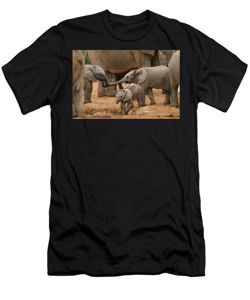 Pachyderm Pals Men's T-Shirt (Athletic Fit)