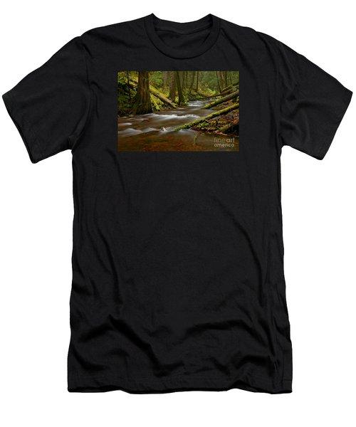 Panther Creek Landscape Men's T-Shirt (Slim Fit) by Nick  Boren